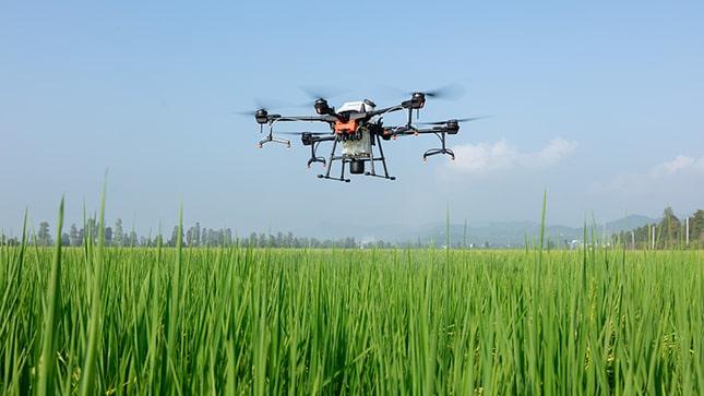 mezőgazdasági drón szántóföld felett