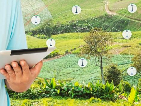 Minden, amit a Digitális Agrár Stratégiáról tudni kell