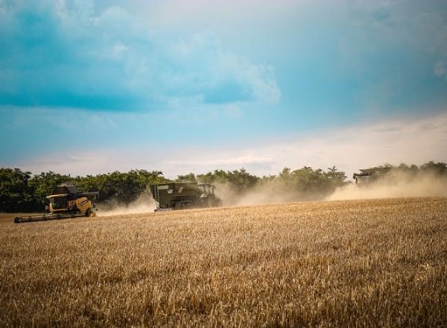 Ez a nyár a mezőgazdasági pályázatoké! A legfontosabb határidők egy helyen!