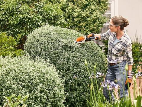 Itt a lista – ezt az 5 kerti munkát most kell elvégezned!