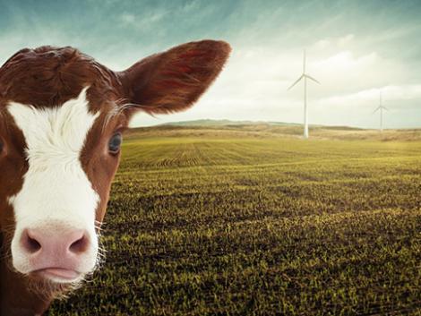 Mit hoz a gazdák életébe az Európai Unió zöld fordulata? Kell aggódni?