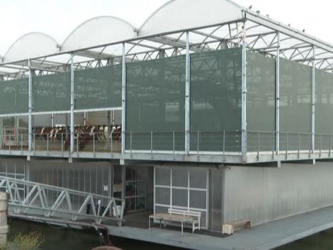 Új szintre emeli a fenntartható mezőgazdaságot a hollandok úszó tehenészete – videó