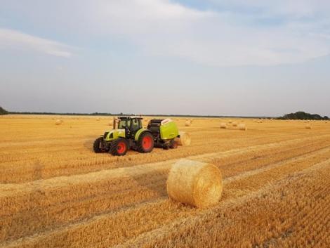 Az aratással nincs vége a munkának – A tarlóápolás fontosságáról