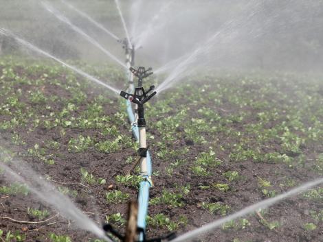 Öntözés nélkül a mezőgazdaság már nem tudja átvészelni a nyarakat