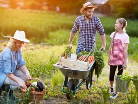 Így duplázd meg a kerted!