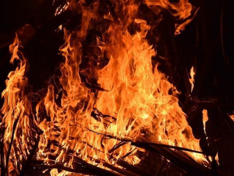 Tűz pusztított egy hódmezővásárhelyi állattartó telepen