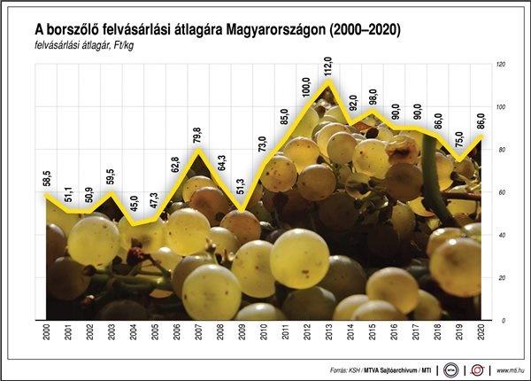 szőlő ára