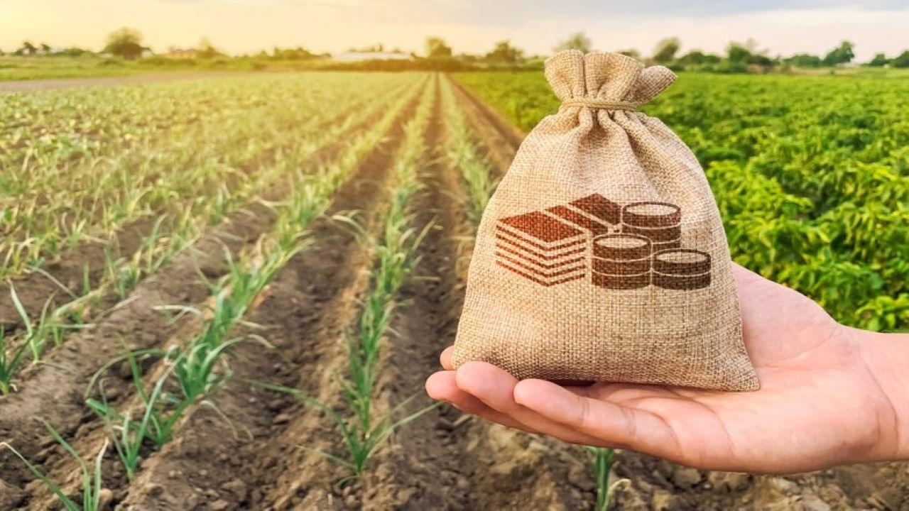 Agrárminiszter támogatás