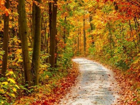 Ma van az őszi napéjegyenlőség – mit is jelent ez?