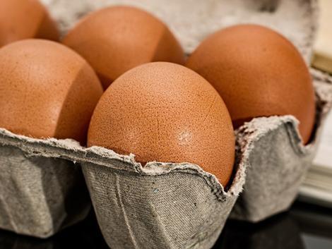 Ha valóban betiltják a ketreces tartást, az komolyan betesz a magyar tojástermelésnek