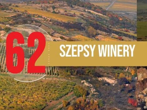 A világ 100 legjobb borászata közé került egy magyar is