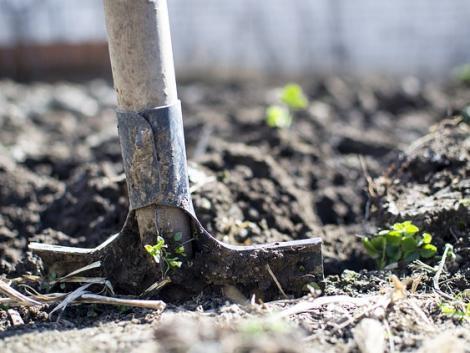 Ideje felásni a kertet – nem mindegy, hogyan csinálod!