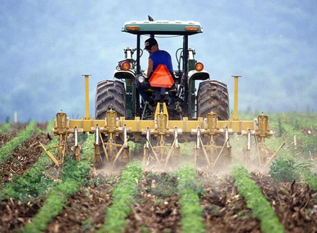 Ki, mennyit keres a mezőgazdaságban? Itt vannak a számok!