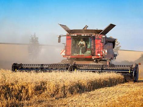 Határ a csillagos ég? – A világpiaci gabonaárak tovább emelkednek