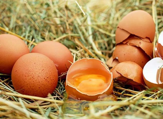 Minden tojáson 5 forintot buknak a tojástermelők