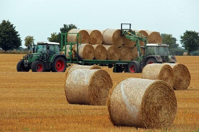 aratás után elszállítják a szalmabálákat