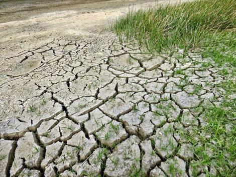 Kegyetlen időjárás vár a gyerekeinkre – lesz elég termés?