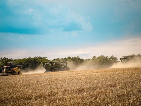 Ezen múlik a 21. századi mezőgazdaság