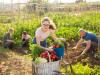 Megnézem ezt magamnak! – agrárpályázat tinédzsereknek