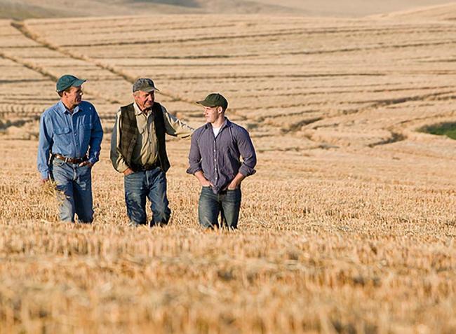 Csúcson a mezőgazdasági beruházást és a gazdaságátadást tervezők aránya is