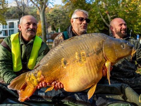 Óriási ponttyal mutatkozott be a Balaton a világ horgászainak
