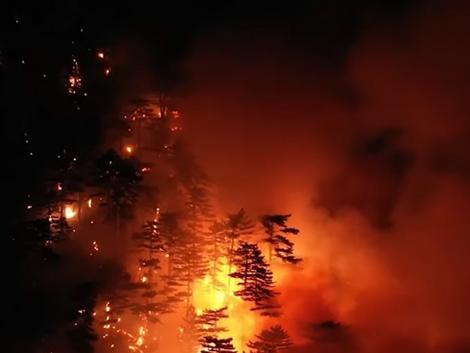 Hatalmas erdőtűz Ausztriában a magyar határtól 70 kilométerre – Videó