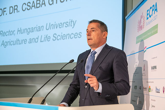Dr. Gyuricza Csaba