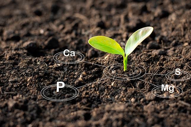 Tápanyag utánpótlás a növényeknek