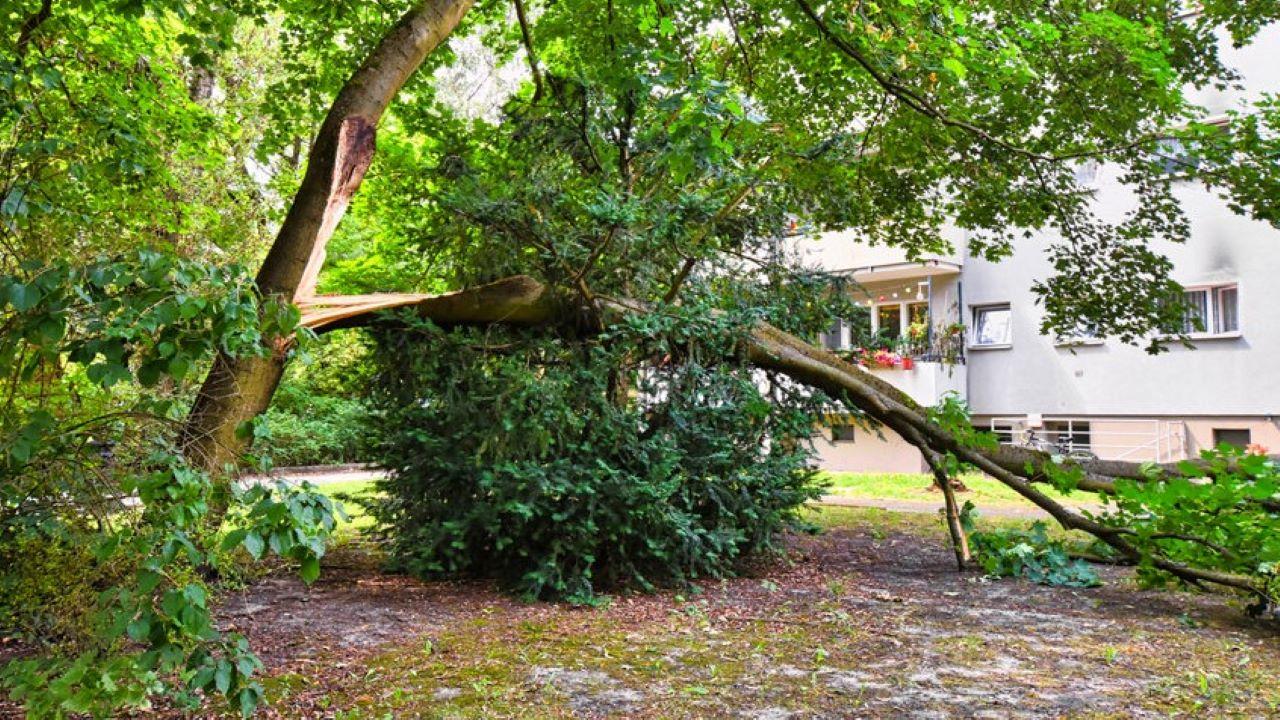 Óriási károkat okozott a vihar. Fotó: 123rf.com