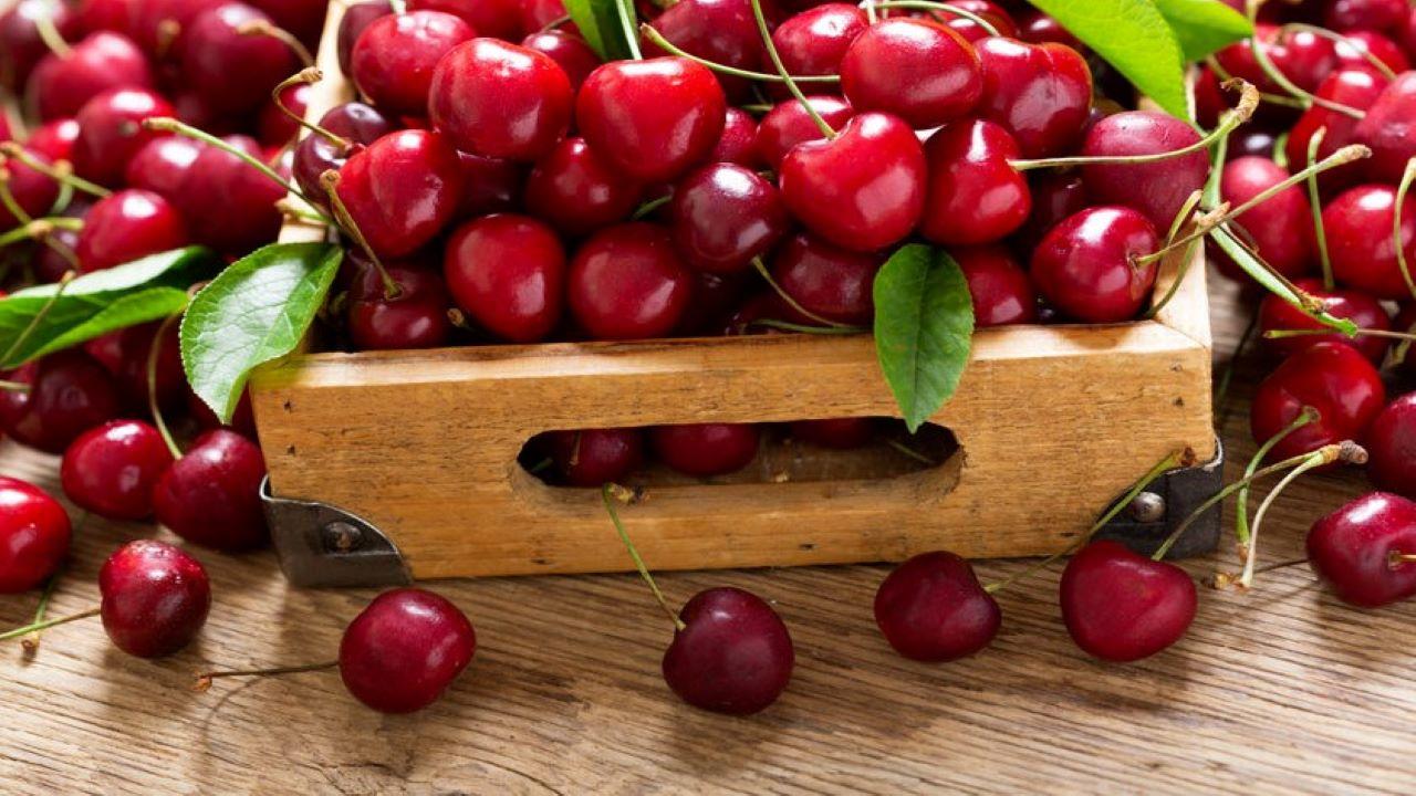 Olaszország Európa legnagyobb cseresznyetermelője. Fotó: 123rf.com