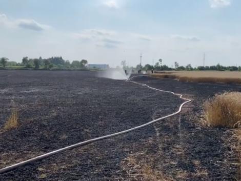 Nagyméretű körbálák váltak hamuvá, mire a tüzet megfékezték