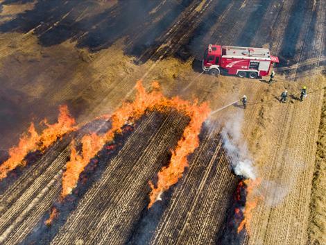 A tarlóégetés tilos, de van, amikor szükséges – ezekre figyelj, ha tarlót kell égetni