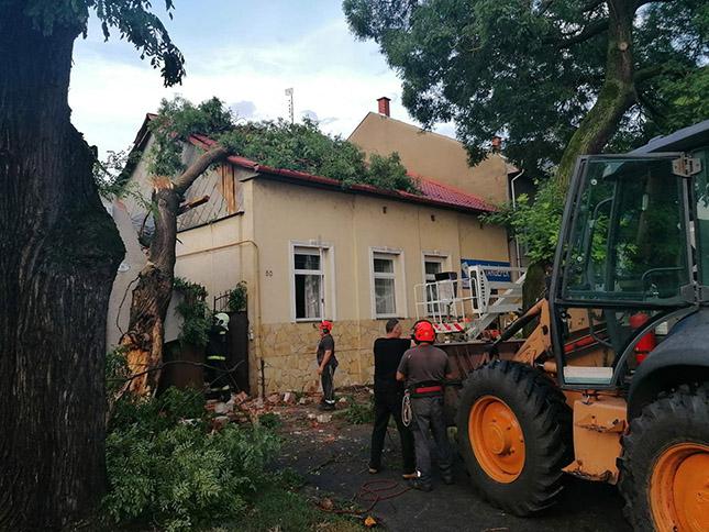 romok a vihar után
