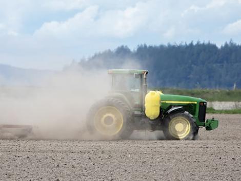 Feltörekvő magyar agrárcégek kapnak újabb esélyt a nagyoktól