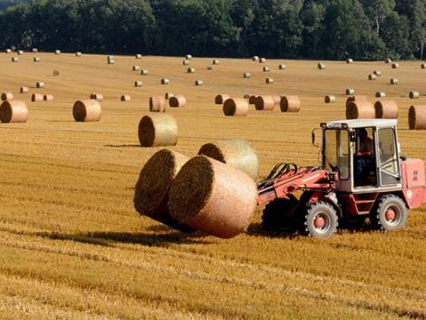 Hova emelkednek még a termelői árak? 13 hónapja a csúcs felé!