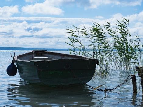 Baj lehet a Balaton vizével – fonalas kékalga jelent meg a magyar tengerben