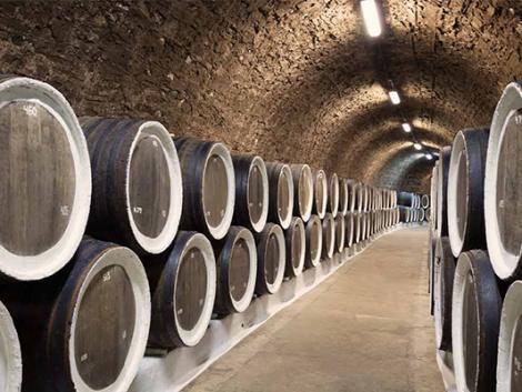 Halálos veszély a magyar borospincékben