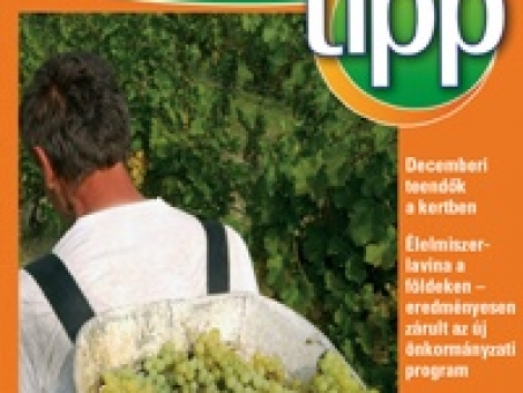 Agroinform tipp – november