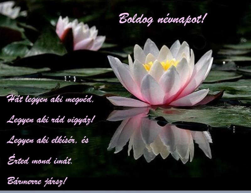 sok boldog névnapot kívánok néked most Névnap   Fórum   Mezőgazdasági közösség   Agroinform.hu   10. oldal sok boldog névnapot kívánok néked most