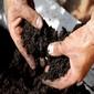 Volt - Nincs - Lesz...a talajbaktériumok világában