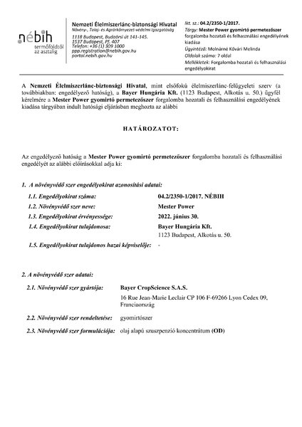 mesterpower_eng_20170627.pdf